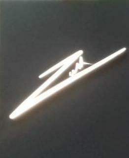 Zeeshan shoes logo